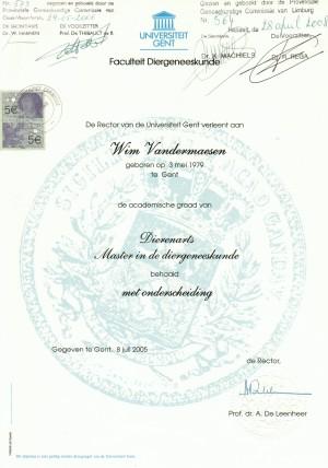 diploma wim