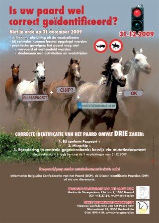 Identificatie paard